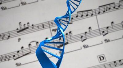 ADN y la música
